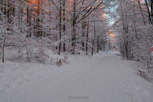 Winterwandern am Ochsenkopf