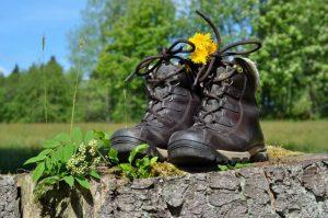 Wandern am Ochsenkopf im Fichtelgebirge
